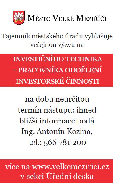 Investiční technik