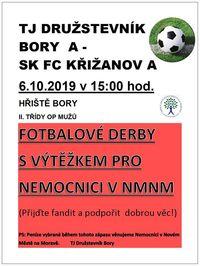 fotbal bory