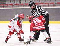 hokej mladi_copy