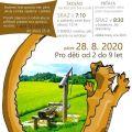 V Borech je drak aneb výprava za pokladem pro školáky i...